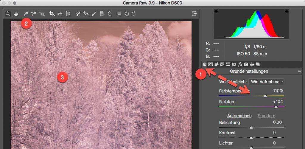 Photoshop RAW Converter - DNG Profil Weissabgleich