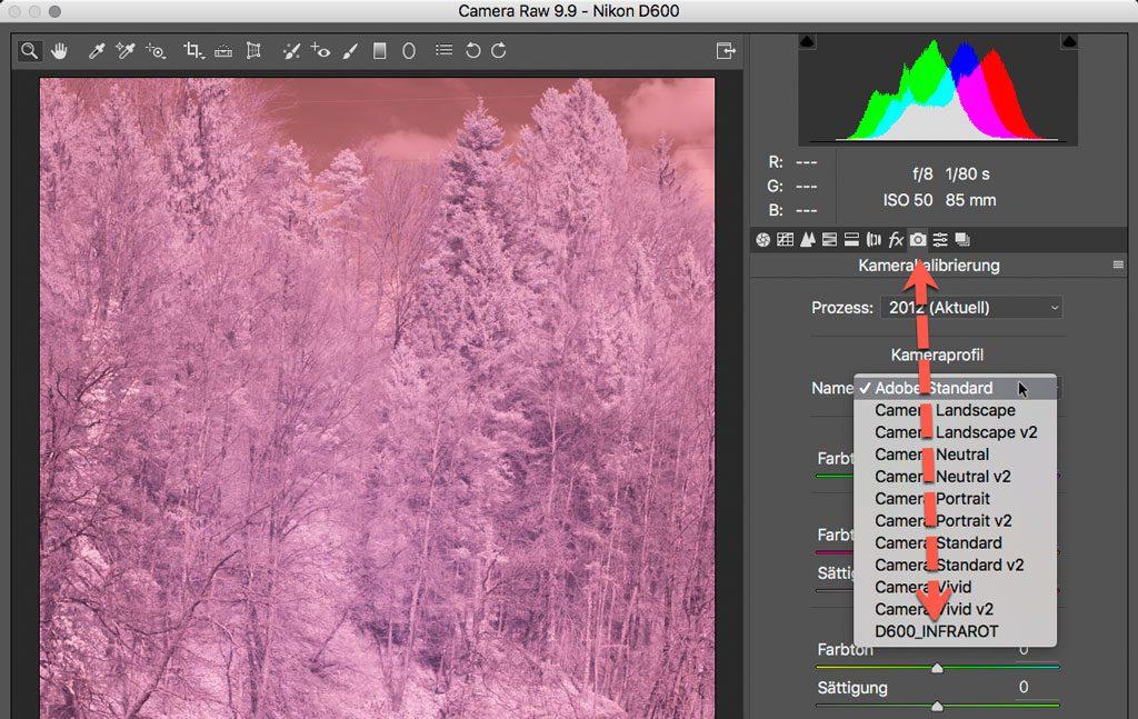 Photoshop RAW Converter - DNG Profil auswählen
