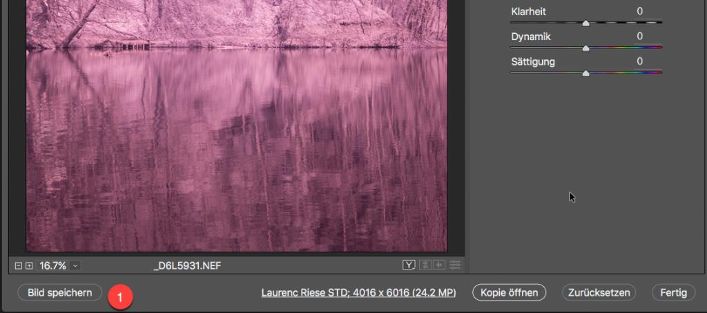 Photoshop RAW Converter IR Bild als DNG speichern