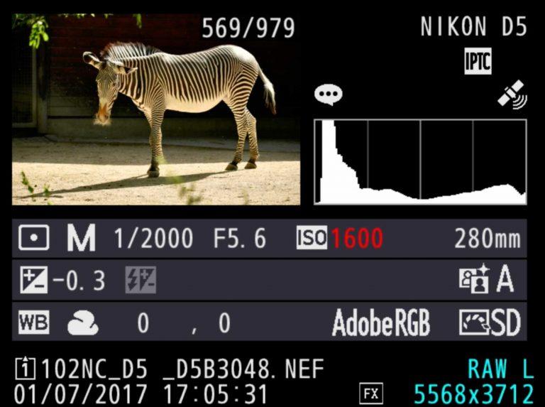 Zebra-Kamera Einstellungen