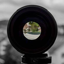 Kamera: NIKON D5 |  | Brennweite: 60mm | Verschlusszeit: 1/80 | Blende: f/8.0 | ISO: 100 | Datum: 2017:07:10 10:25:08 Tiere,animals,Vogel,birds,green,grün,tiger,elephant,giraffe,maus,katze,cat,dog,hund,zoo,storch,affe,gorilla,zaun,fence,gehege,pferd,horse,zebra,kamel,camel,kuh,stier,cow,tierpark,flickr,stern-view,Photography,LRE Photography,laurenc,laurenc riese,Nikon D5,Nikon,www.lriese.ch,lre,lriese,