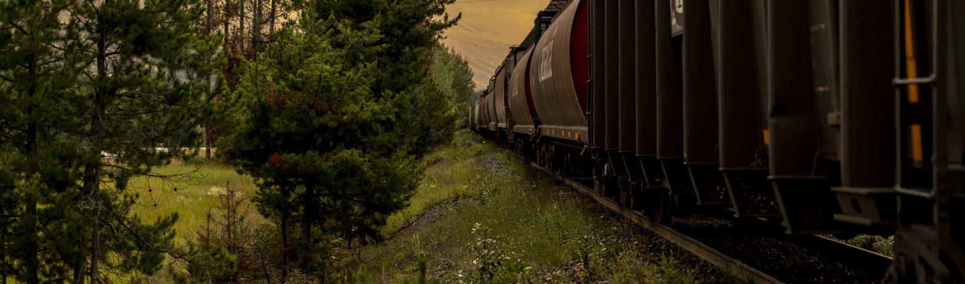 Reisebericht: USA & Canada von Seattle bis Bella Colla - British Columbia im griff der Waldbrände